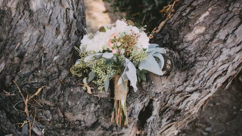 still, items, things, flowers, bouquet, wrap, ribbons, leaves, nature, tree, bark, trunk, wood, event, wedding, prom