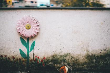 flower, pink, petal, bloom, garden, plant, nature, autumn, fall, art, design, wall, mural, painting