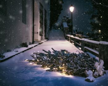 snow, winter, lights, trees, spruce, street, night, snowing, fence, christmas, pants, house, stairs, cold