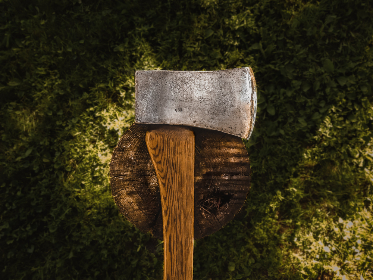 axe,  tree,  stump,  chop,  wood,  green,  top,  ground,  natural,  handle,  forest,  ax,  log,  lumber,  outdoors,  lumberjack