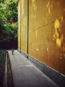 temple, wall, walk, baoy, china, yellow