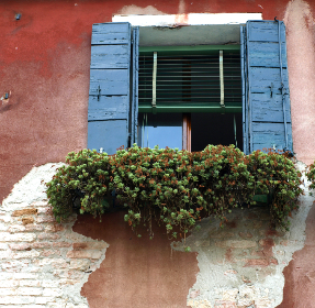 exterior,  window,  wall,  flower,  shutters,  brick,  old,  weathered,  home,  architecture,  plant,  rustic