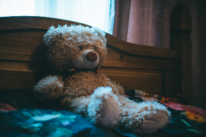 cuddly,  bear,  bed,  soft toy,  soft,  toy,  wood,  headrest,  cover,  fur, window