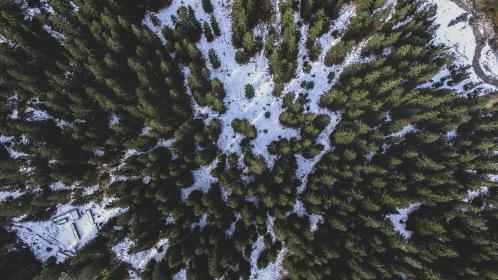 trees, plant, nature, mountain, landscape, snow, winter, aerial, view