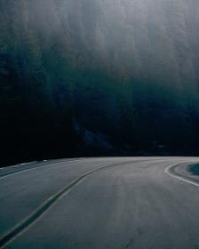 nature, empty, road, trees, woods, forest
