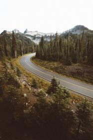 trees, plant, nature, path, road, forest, aerial, view, mountain, landscape, mountain