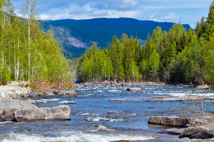 norway,  forest,  Mountains ,  amazing view,  Colorful ,  Scandinavia , landscape, nature, river, rapids, trees