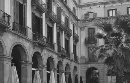 building, balconies, balcony, windows, palm trees, black and white, architecture