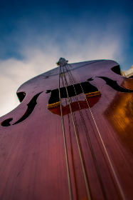 bass,   musician,   symphony,   string,   isolated,   wooden,   art,   artistic,   musical,   instrument,   music,   classical,   play,   wood,   choir,   concert,   player,   upright,   orchestral,   close-up,   closeup,   orchestra,   contrabass,   cellist,   idea