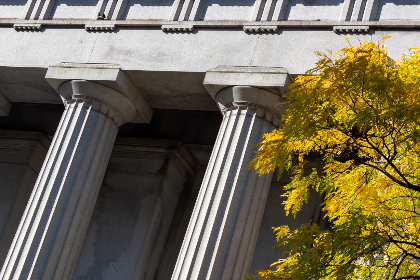 exterior,  columns,  city,  building,  structure,  design,  bank,  business,  angle,  architecture,  landmark,  autumn,  tree