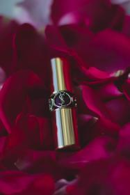 lipstick, beauty, fashion, makeup, collection, cosmetics, petal, flower