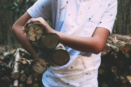 wood, logs, lumber, guy, man, people, forest, trees, nature, outdoors
