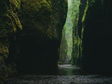 nature, rock, formation, water, river, aesthetic, flow, trees