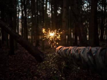 spark, people, fire, light, trees, nature, hand, forest, woods