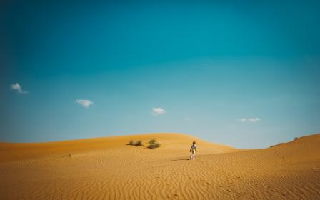 desert, landscape, sunny, highland, mountain, sky, people, travel, alone