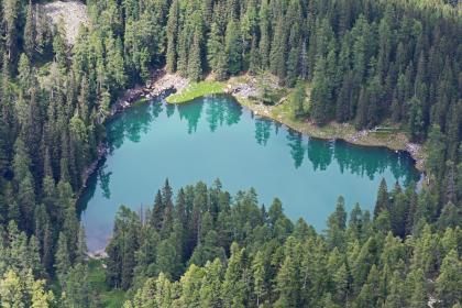 aerial, view, green, plants, trees, forest, nature, lake, water, reflection