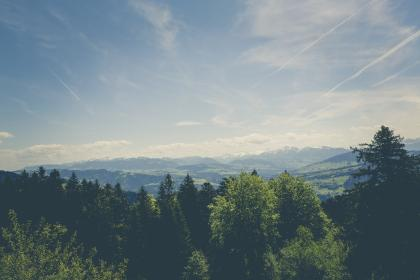 green, trees, plant, nature, forest, mountain, view, highland, sky, cloud, outdoor