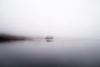 sea, water, fog, nature, cold, weather, horizon, trees, plants