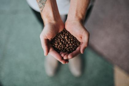hand, palm, coffee, beans, seeds