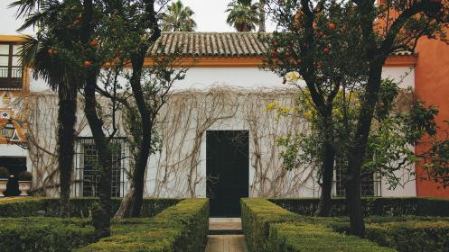 Seville, Spain, house, shrubs, trees, oranges, vines, cobblestone