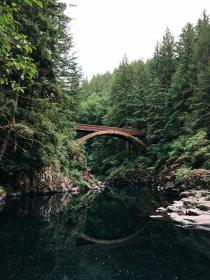 forest, nature, plants, trees, pine, water, river, bridge, rocks, mountain, reflection, sky, steel