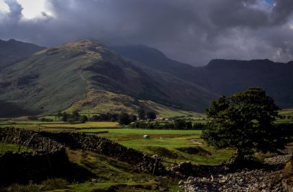 green,  grass, field, farm, rocks, nature, outdoor, trees, mountain, highland, clouds, sky, outdoor