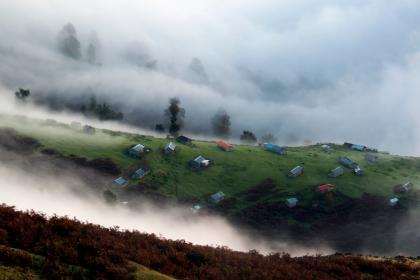highland, landscape, nature, green, grass, houses, rural, fogs, cold, trees, plant
