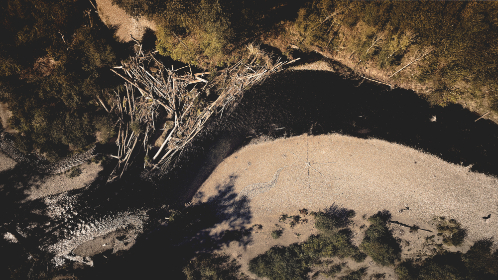 free photo of river   aerial