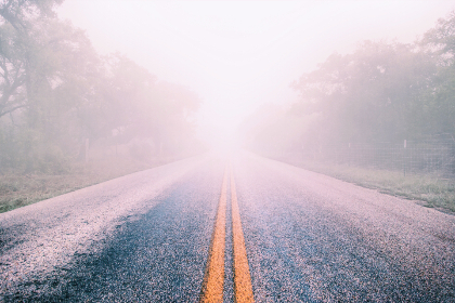 fog,   mist,   road,   highway,   winter,  forest,   trees,  yellow lines,  yellow,  travel,  car