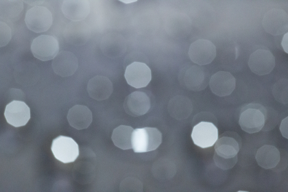 free photo of bokeh   background