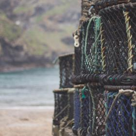 basket, net, fishing, sea, ocean, beach