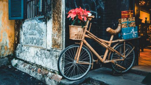 transportation, bicycle, wood, bamboo, flowers, gifts, style, decor, shop, wheels, window