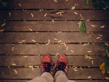 shoes, laces, wood, planks, deck, leaves, samara, fall, autumn, nature, outdoors