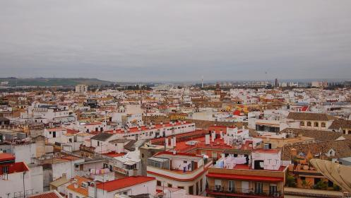 city rooftops