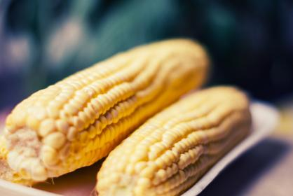 Photo of cornonthecob