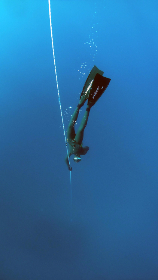Photo of diver
