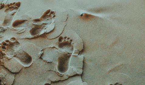 Photo of footprints