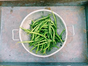 greenbeans vegetables