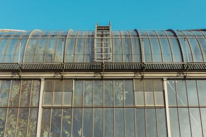 Photo of greenhouse