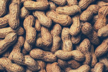 peanuts food