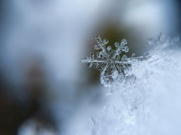 Photo of snowflake
