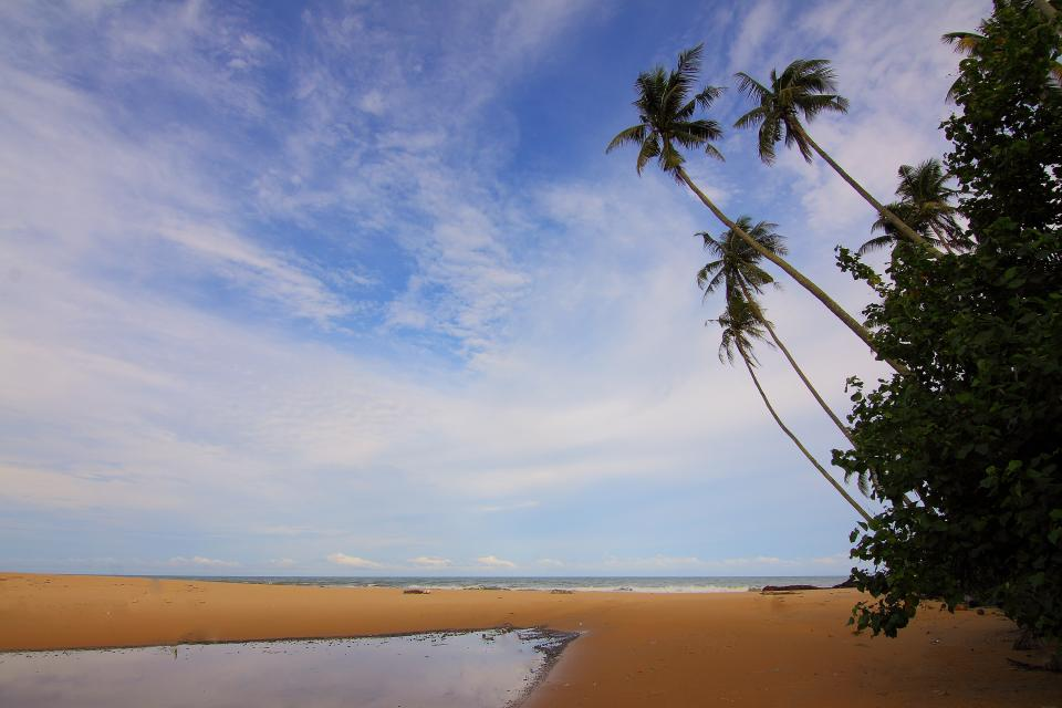 sea ocean water horizon blue sky cloud nature travel outdoor trees plant sand
