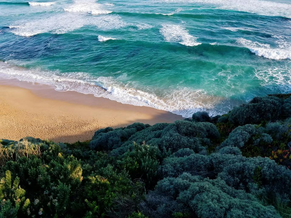 sea ocean blue water waves nature white sand beach summer vacation coast shore outdoor green trees plants