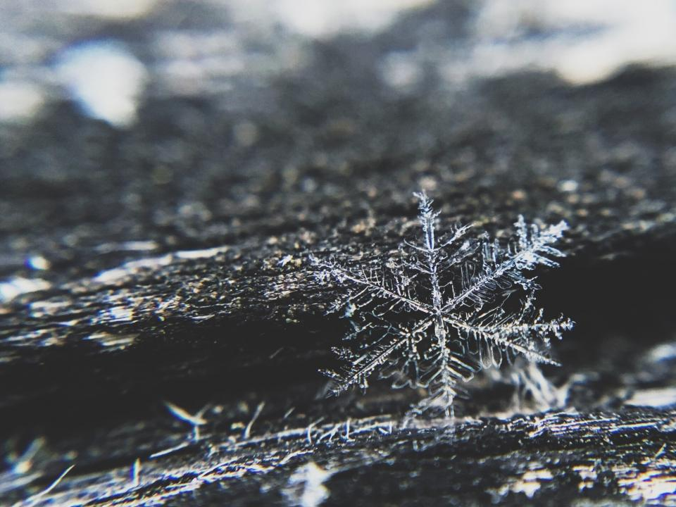 snowflake ice winter cold christmas