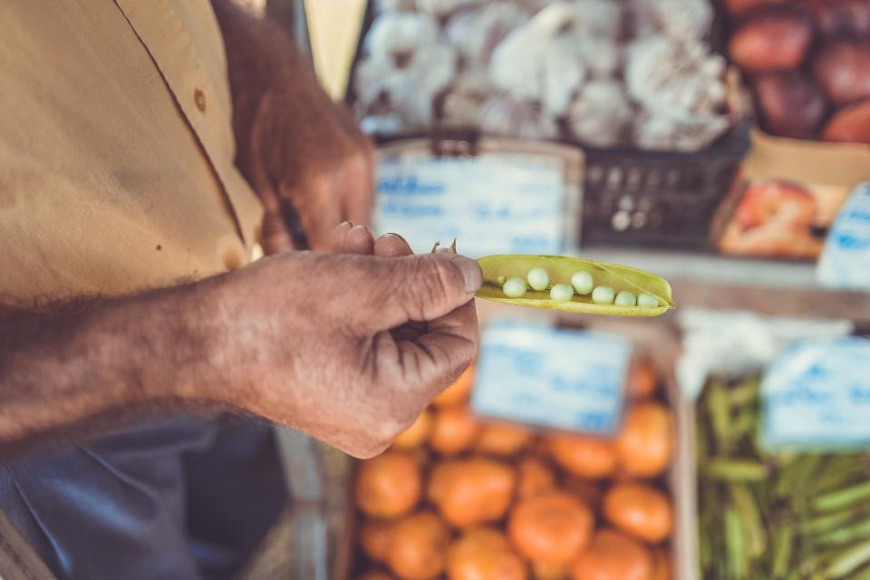 fruits vegetables food market grocery seed beans hand arm blur