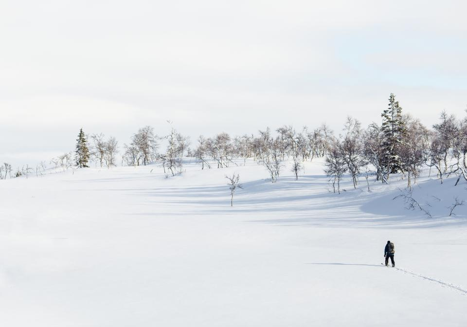 highland landscape nature tree plant people man hiking sky white snow winter cold
