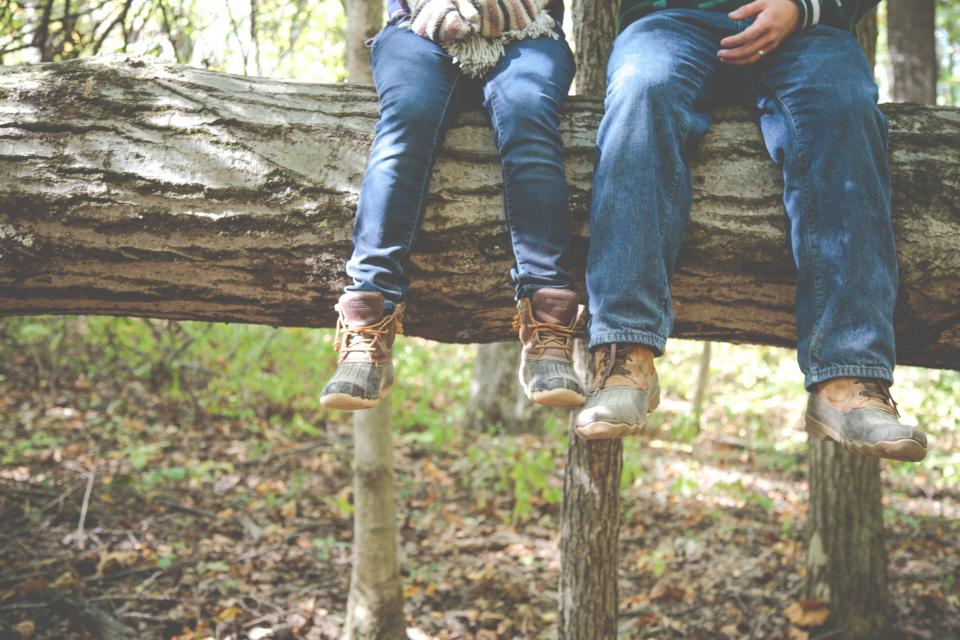 forest woods trees log nature people jeans boots outdoors leaves friends