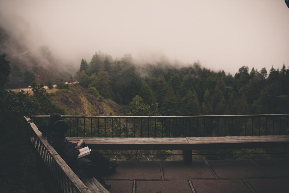 grey sky fog reading book people sitting wood bench railing trees hills