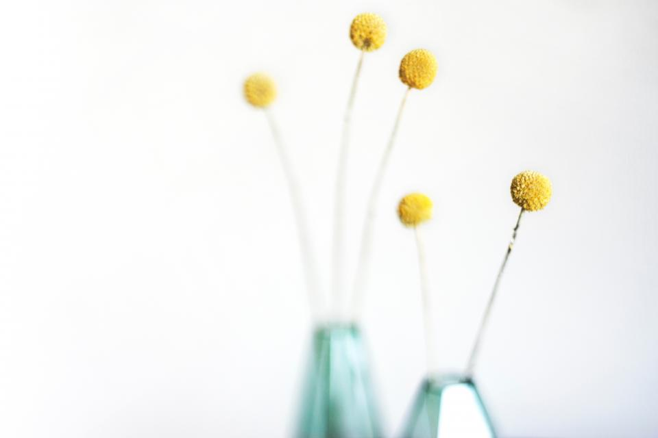 flower interior design blur