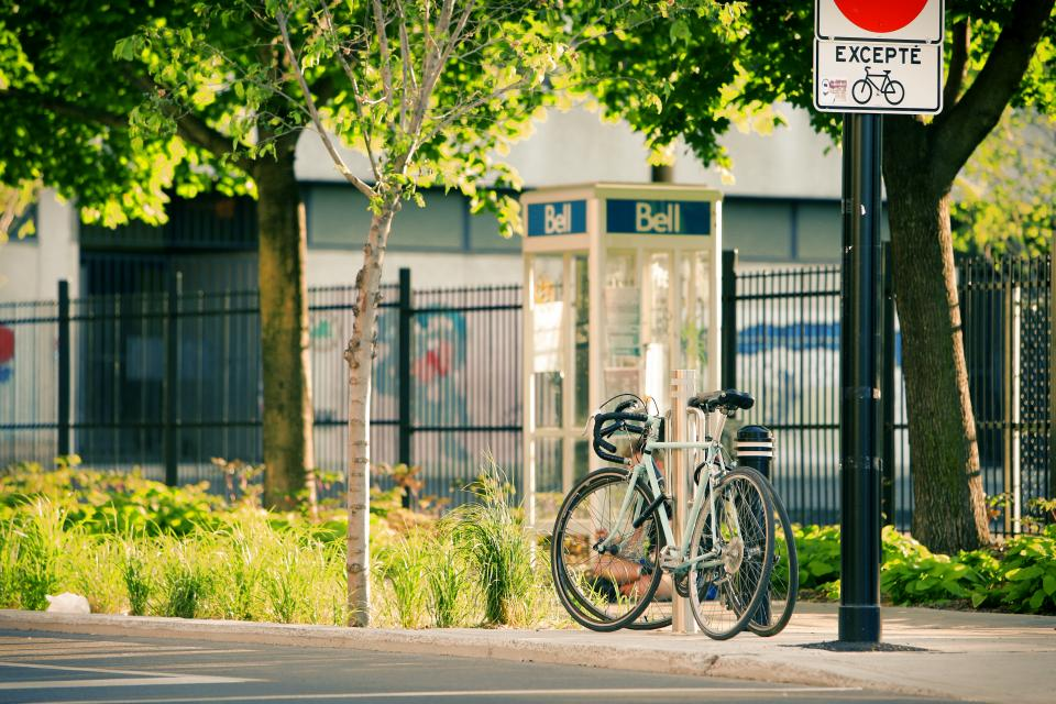 bikes bicycles street pavement sidewalk trees grass bushes posts telephone booth bell